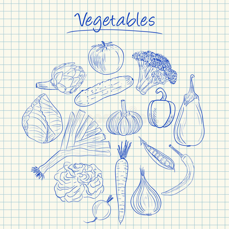 Vegetables doodles - squared paper royalty free stock photography