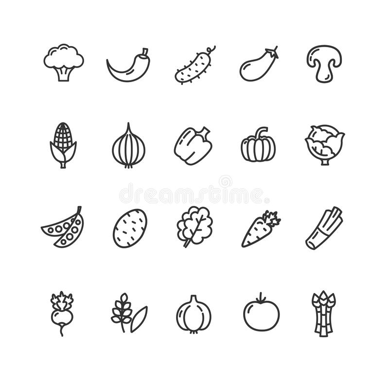 Vegetables Food Black Thin Line Icon Set. Vector. Vegetables Food Black Thin Line Icon Set for Web and App Isolated on White Background. Vector illustration vector illustration