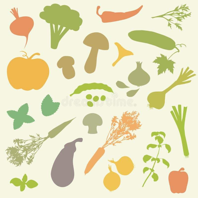 Vegetables, food vector illustration
