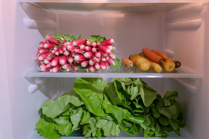 Vegetables in a fridge. Vegetables , radis and salad in a fridge stock image