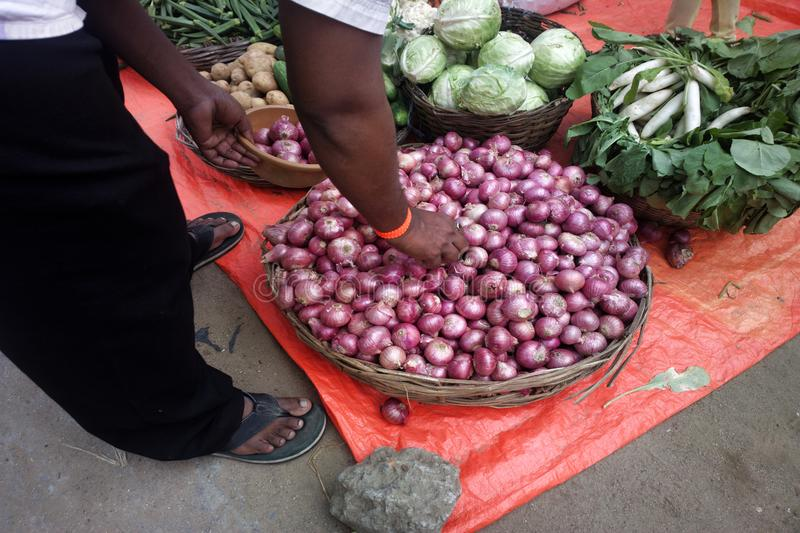 Blue bulb onion, red onion. Vegetables and fruits in Indian Bazaar. Blue bulb onion, red onion, onion family, bulb vegetables, radish, cabbage, potatoes royalty free stock images