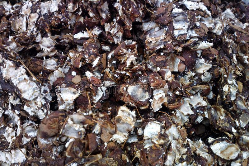 Crushed coconut shell for manufacture of pinibricket royalty free stock image