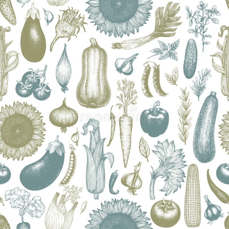 Vegetables hand drawn vector seamless pattern. Retro engraved style background. Can be use for menu, label, packaging royalty free illustration