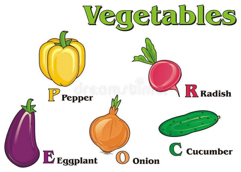 vegetables and his names stock illustration illustration of
