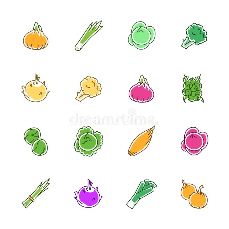 Vegetables icons - Onion, cabbage and cauliflower stock photography