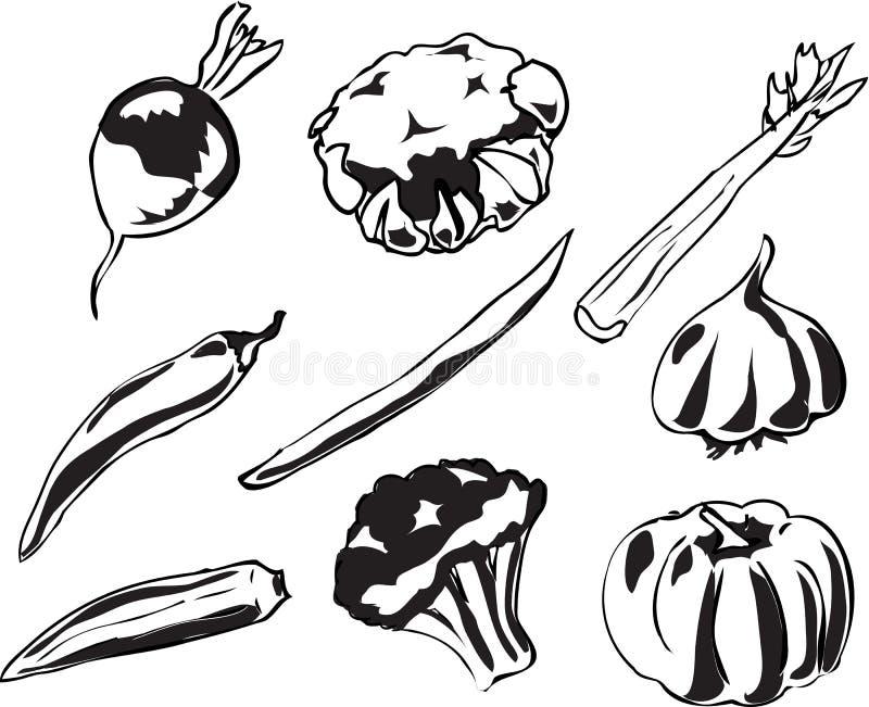 Download Vegetables illustration stock vector. Illustration of healthy - 2798179