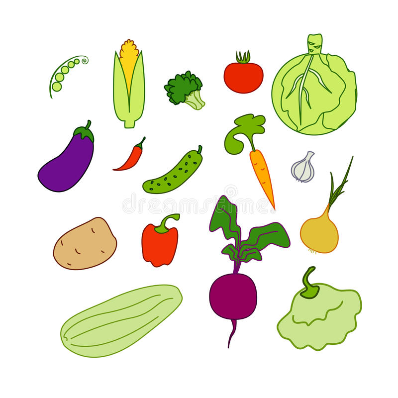 Download Vegetables isolated stock vector. Illustration of broccoli - 23774768