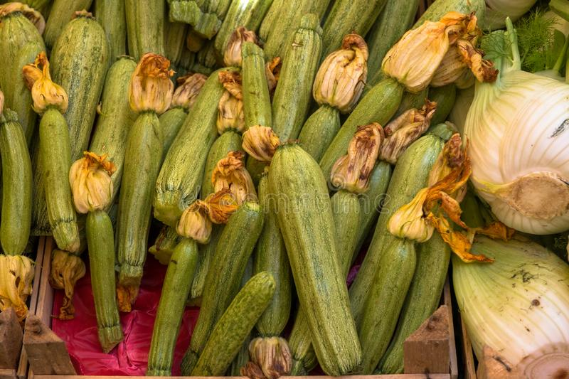 vegetables on the market royalty free stock photos