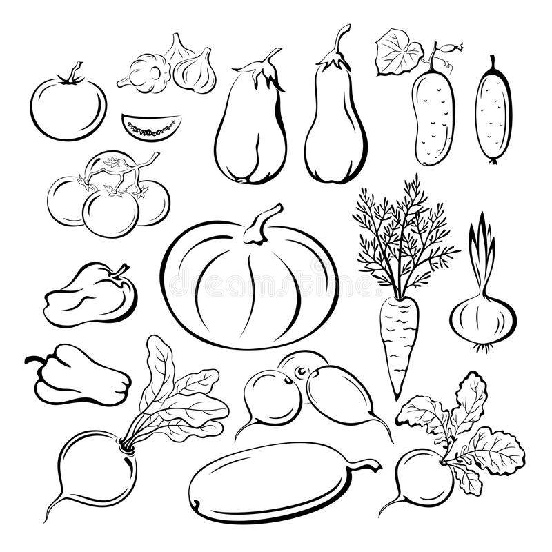 Line Art Fruits : Vegetables outline pictograms set stock vector