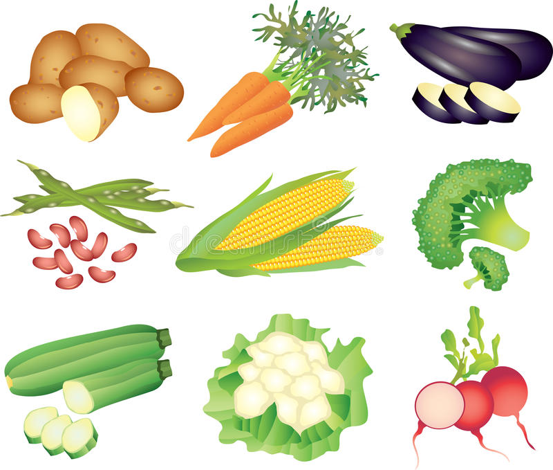 Vegetables photo-realistic set. Vegetables photo-realistic detailed set vector illustration