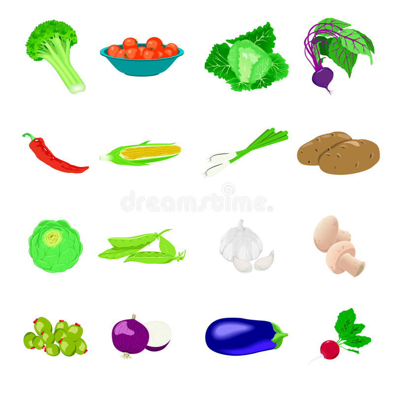 Vegetables photo realistic, set. Vegetables icons, detailed photo realistic set vector illustration