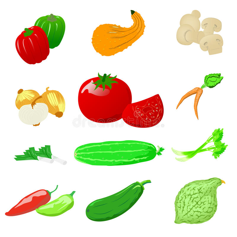 Vegetables photo realistic, set. Set of photo realistic ripe and juicy vegetables. Natural product. Isolated elements on white background. Vegetarian healthy vector illustration