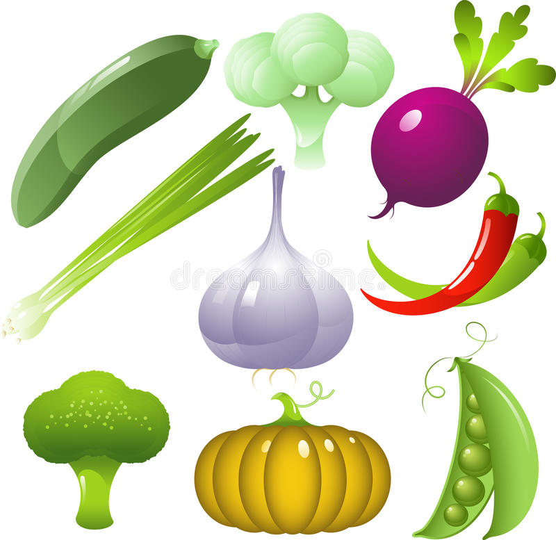 Download Vegetables set stock vector. Image of freshness, chili - 9549562