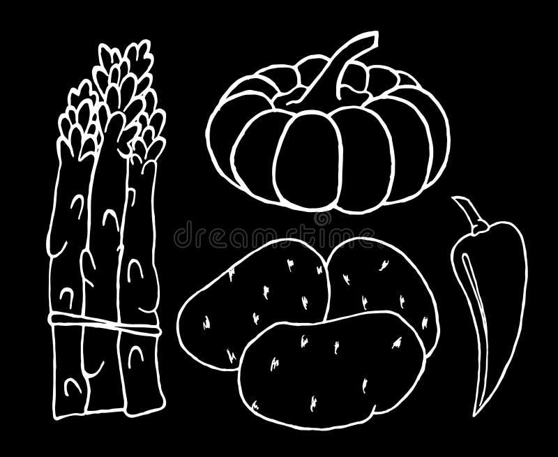 Vegetables set. stock photo