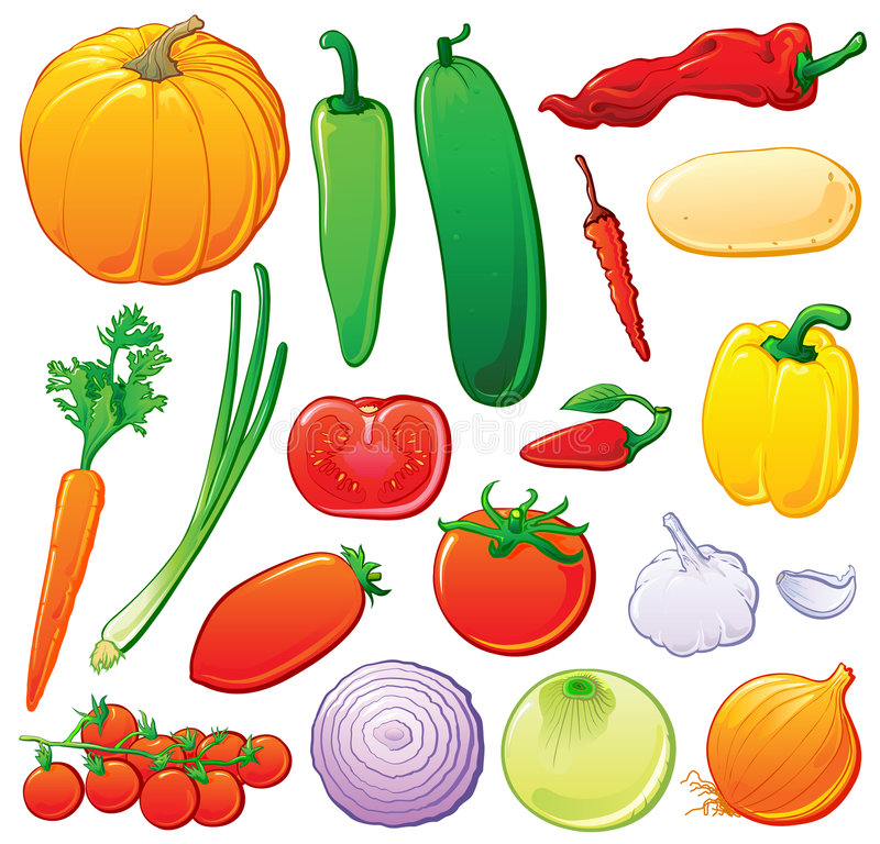 Vegetables set with color outlines vector illustration