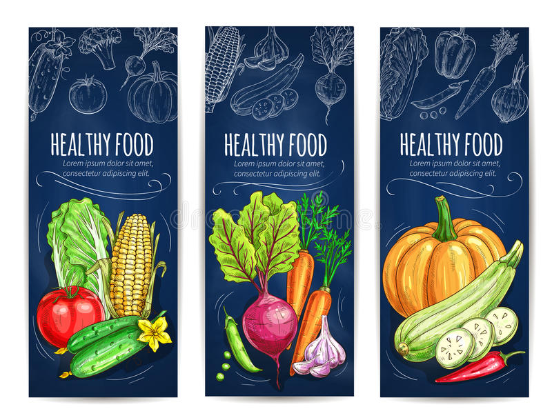 Vegetables sketch. Vegetarian vegetable banners vector illustration