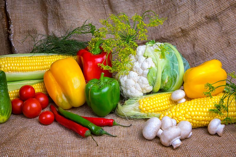 Vegetables, vegetables on the table. corn, cauliflower, tomatoes, champignons, chili peppers. Vegetables, vegetable arrangement, vegetables, vegetables on the stock photos