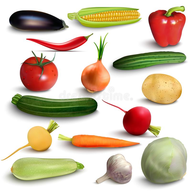 Vegetables or veggies farmer harvest, exotic tropical juicy fruits, forest or garden berries and herbal spices or spicy royalty free illustration