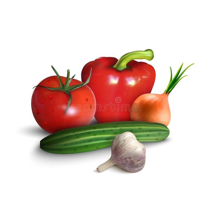 Vegetables or veggies farmer harvest, exotic tropical juicy fruits, forest or garden berries and herbal spices or spicy vector illustration