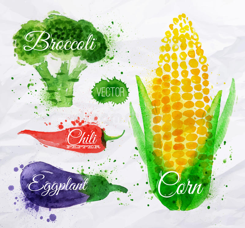 Free Vegetables Watercolor Corn, Broccoli, Chili, Royalty Free Stock Images - 40844819