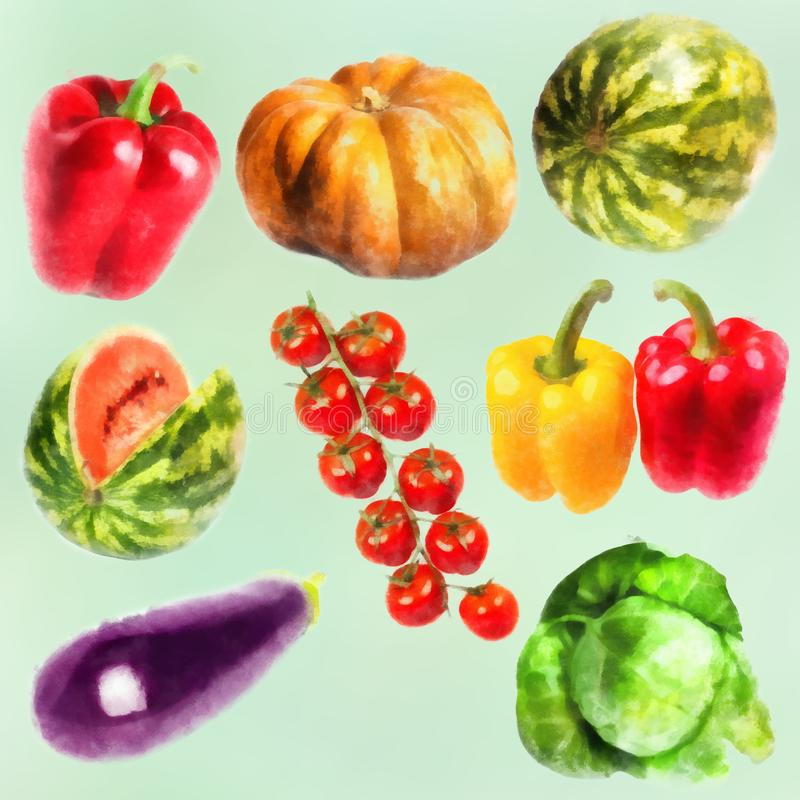 Vegetables watercolor set- pumpkin, sweet pepper, cabbage, watermelon, eggplant, branch of tomatos stock photos