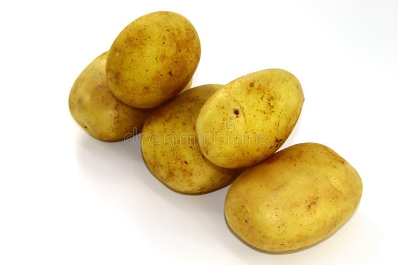 Raw potato tubers lie diagonally on a white background stock photos