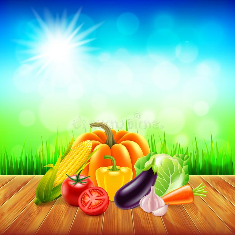 Vegetables on wooden table with sky background vector. Vegetables on wooden table with sky background photo realistic vector stock illustration