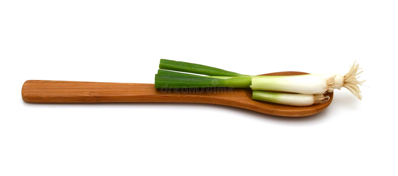Vegetablesisolated grön onions arkivbilder