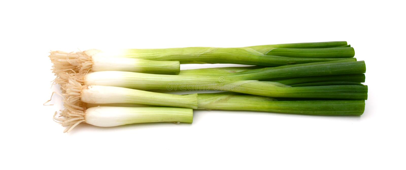 Vegetablesisolated grön onions royaltyfri bild