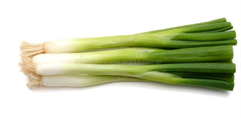 Vegetablesisolated grön onions arkivbild