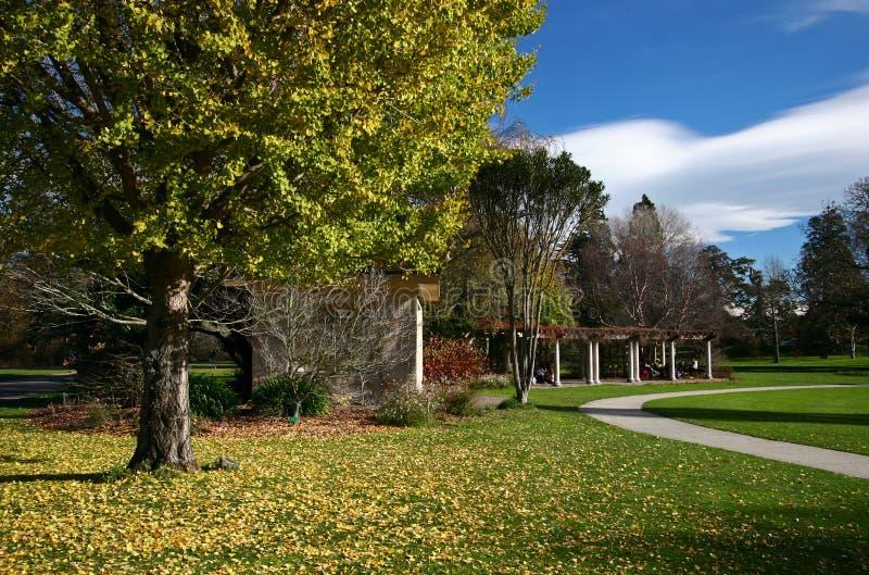 Vegetación idílica en los jardines botánicos de Christchurch, Cantorbery, isla del sur, Nueva Zelanda del otoño imagen de archivo