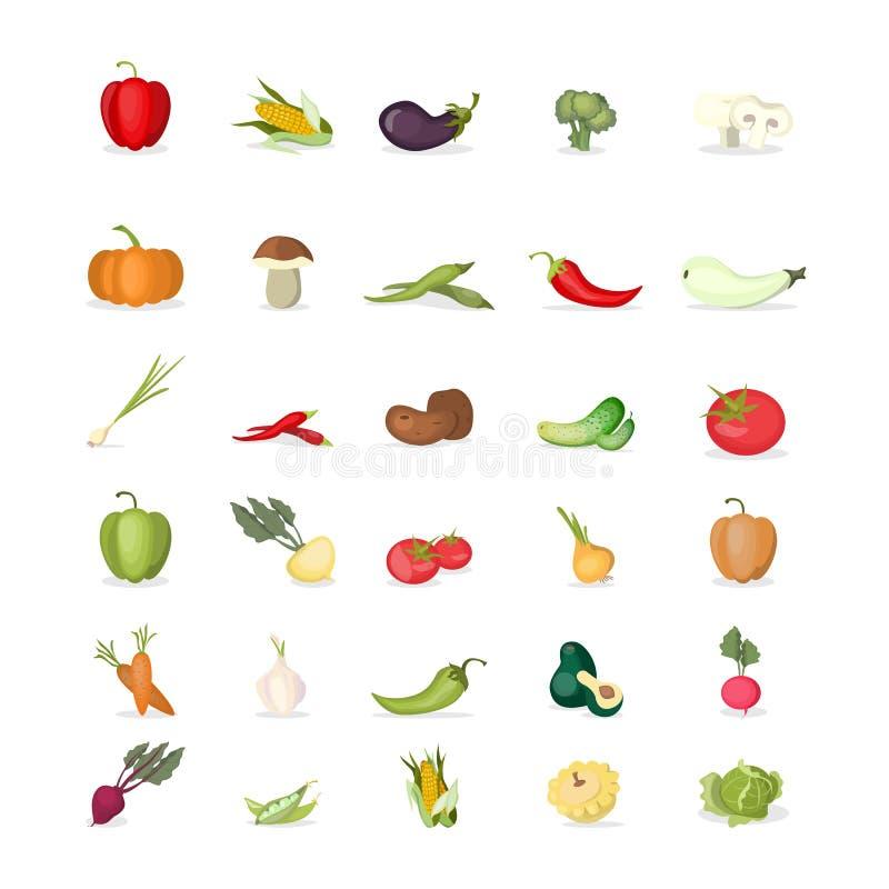 Vegetais ajustados ilustração stock