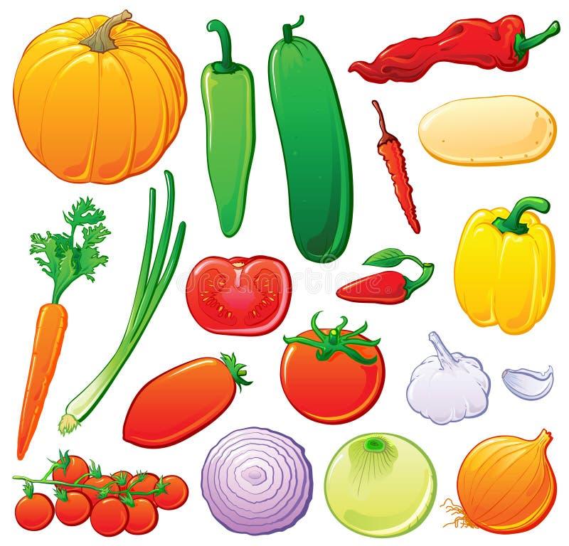 Vegetais ajustados com esboços da cor ilustração do vetor