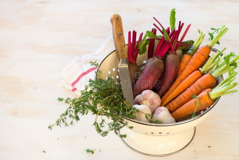 Vegetais, cenouras, beterrabas, alho e verdes orgânicos novos frescos foto de stock royalty free