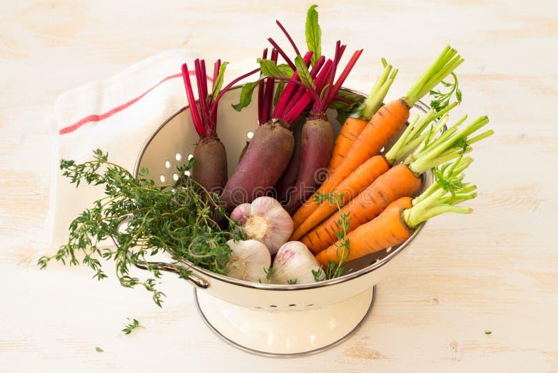Vegetais, cenouras, beterrabas, alho e verdes orgânicos novos frescos foto de stock