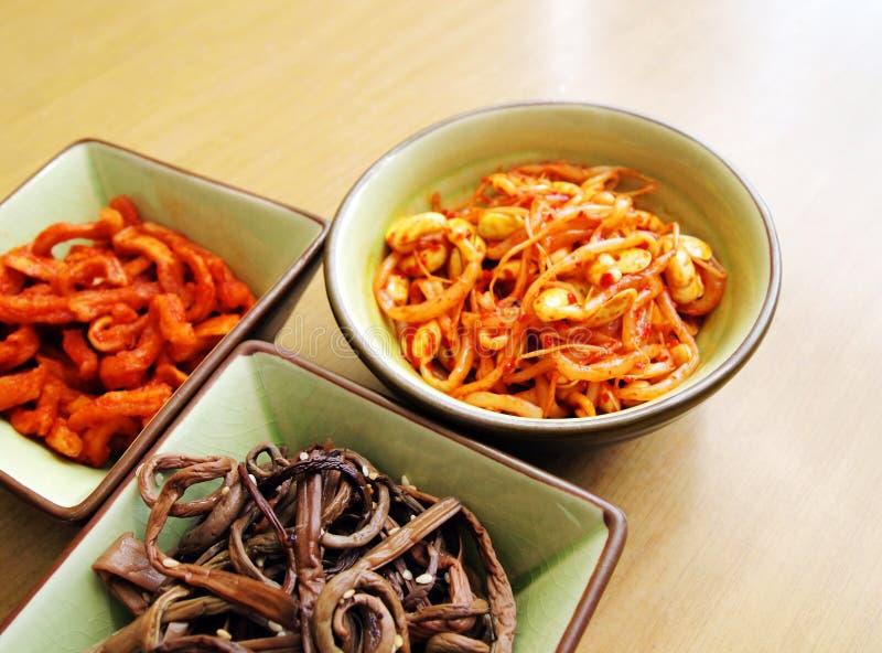 Vegetais coreanos conservados, salada fria fotografia de stock