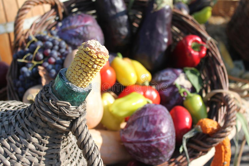 Vegetais da espiga e do outono de milho