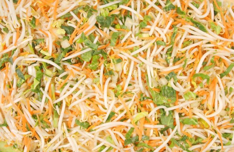 Vegetais da fritada do Stir imagem de stock royalty free