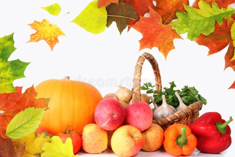 Vegetais de Healty fotos de stock
