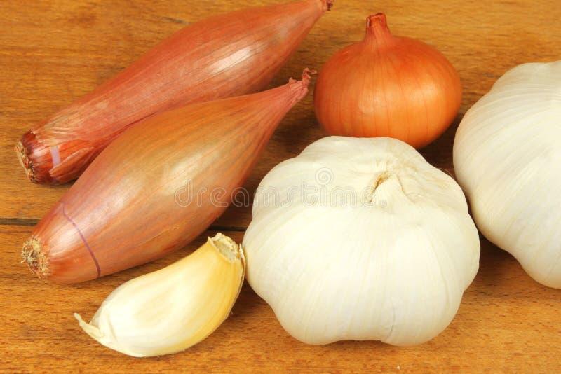 Vegetais do Allium imagens de stock royalty free