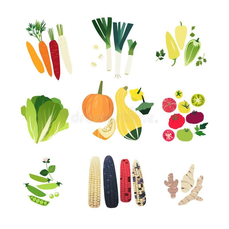 Vegetais do clipart ajustados ilustração stock