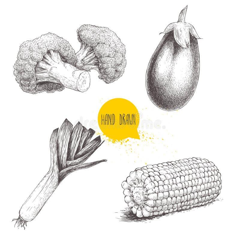 Vegetais do estilo do esboço ajustados O milho do alho-porro, da beringela, dos brócolis e do milho doce remenda ilustração do vetor