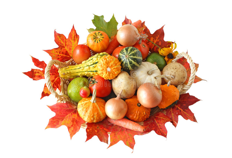 Vegetais do outono imagem de stock royalty free