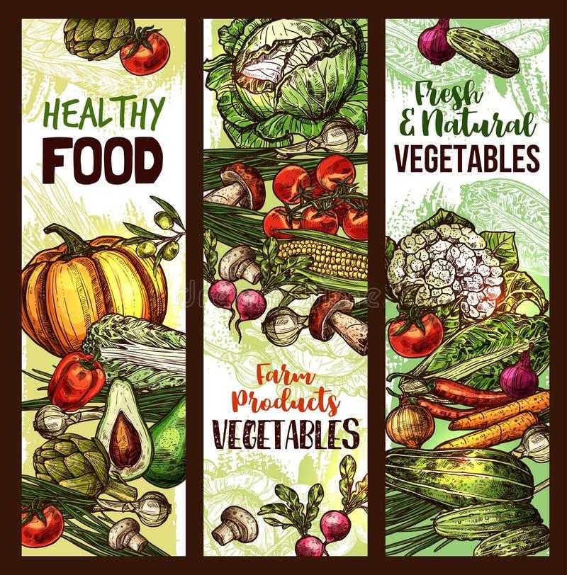 Vegetais do vetor e bandeiras do esboço do vegetariano ilustração do vetor