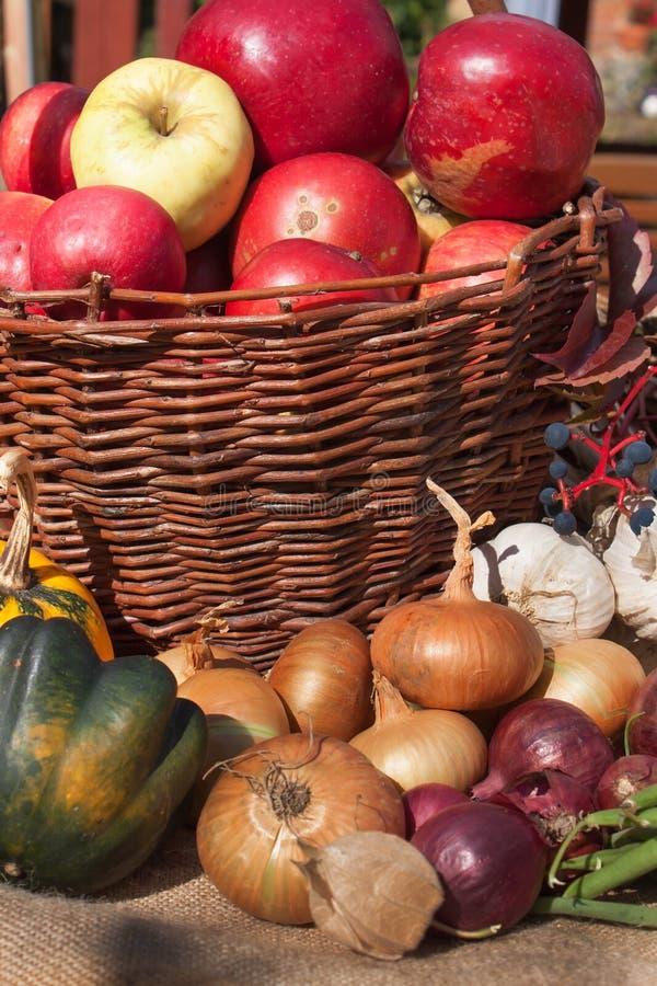 Vegetais e maçãs em uma cesta Dia do outono no jardim home Alimento saudável para a dieta Dia ensolarado imagens de stock