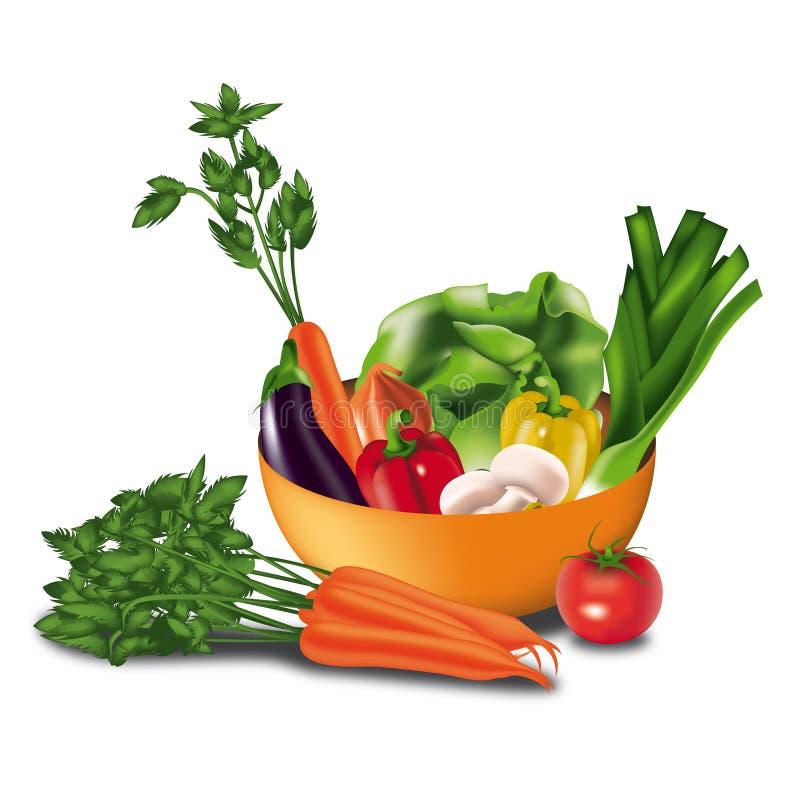Vegetais em uma bacia ilustração do vetor