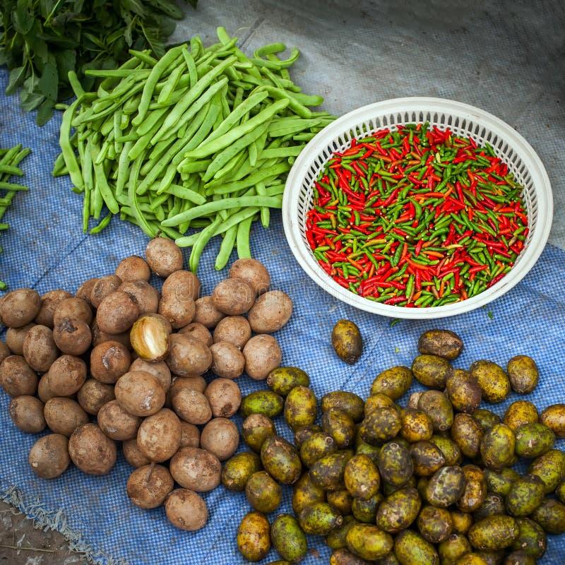 Vegetais, ervas e especiarias orgânicos frescos fotos de stock royalty free