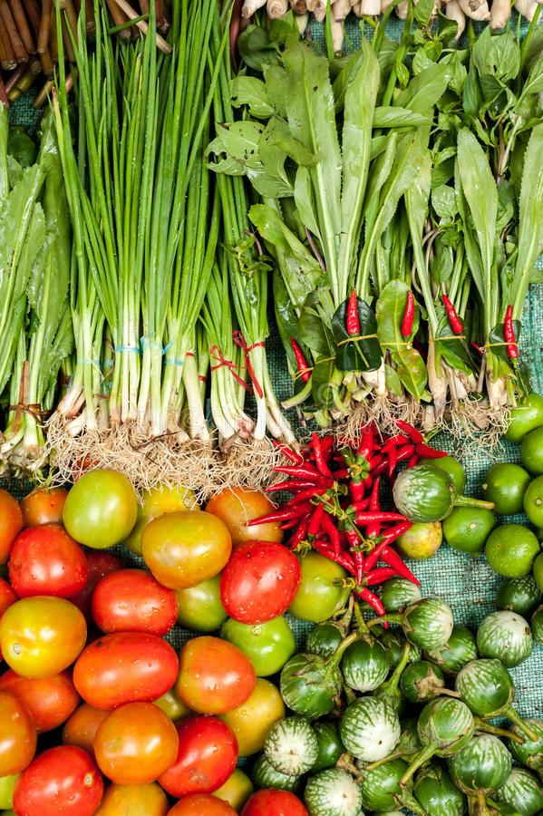 Vegetais, ervas e especiarias orgânicos frescos no mercado asiático foto de stock royalty free