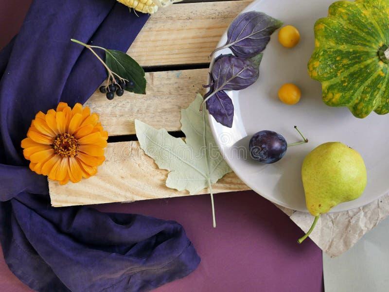 Vegetais, frutos, flores e folhas olorful do ¡ de Ð na superfície de texturas diferentes fotografia de stock royalty free