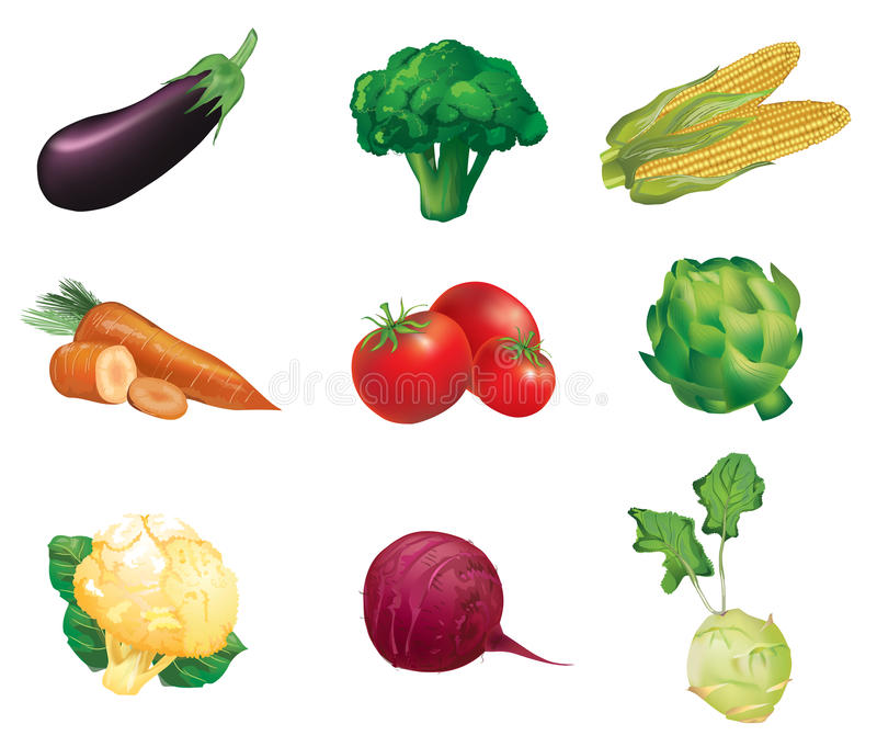 Vegetais, grupo de ilustrações do vetor e de i isolados, detalhados ilustração royalty free